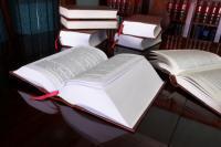 LE MANQUE DE DILIGENCE DE L'ETAT BELGE CONSTITUE UNE FAUTE AU SENS DE L'ARTICLE 1382 DU CODE CIVIL